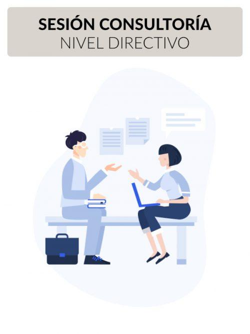 SESION CONSULTORIA NIVEL DIRECTIVO